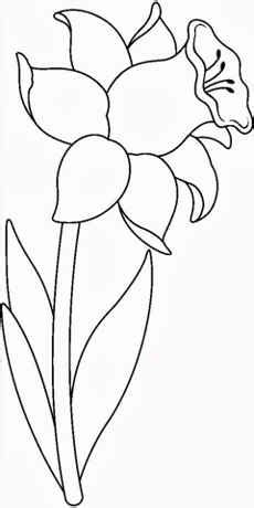 imagenes en blanco para colorear de flores im 225 genes de flores para colorear y pintar
