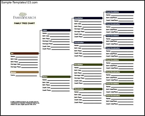 free family tree chart pdf template sle templates