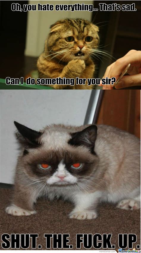 I Love Cats Meme - i love grumpy cat so that s why by werwet meme center