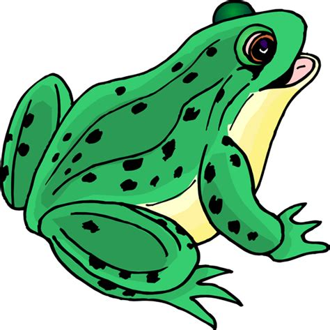 frog clipart green frog clipart clipart panda free clipart images