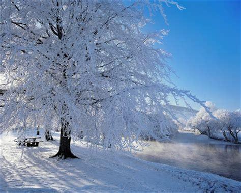 imagenes lindas de navidad con nieve banco de im 193 genes la nieve el mar y los paisajes 35