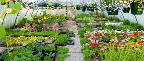 Meinke Garden Center by Garden Greenhouse Greenhouse Plants Niles Il