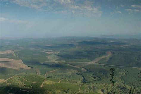 pictures  lowveld south africa images  lowveld