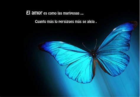 frases con mariposas imagenes frases con im 225 genes hermosas de mariposas todas frases