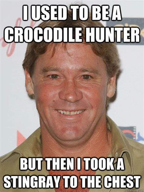 Stingray Meme - i used to be a crocodile hunter but then i took a stingray