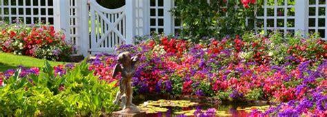 giardino mediterraneo creare un giardino mediterraneo edilnet