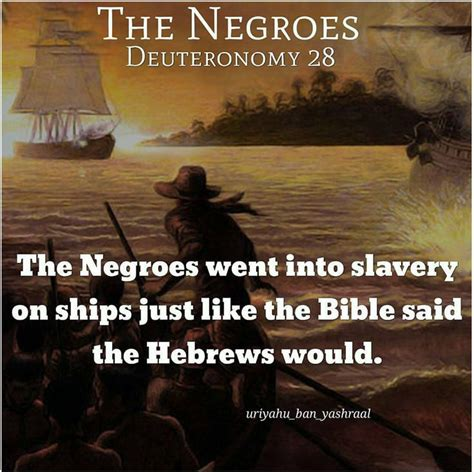 hebrews to negroes 2 volume 3 up black america books 1617 best real hebrews images on spirituality