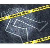 La Investigaci&243n Cient&237fica En Escena Del Crimen