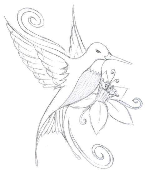 hummingbird flower drawing