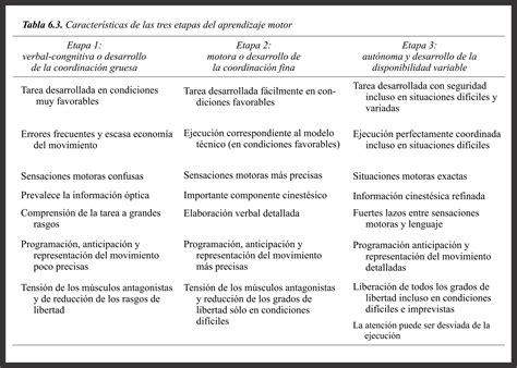 preguntas basicas sobre futbol las etapas en el aprendizaje motor neurociencias y
