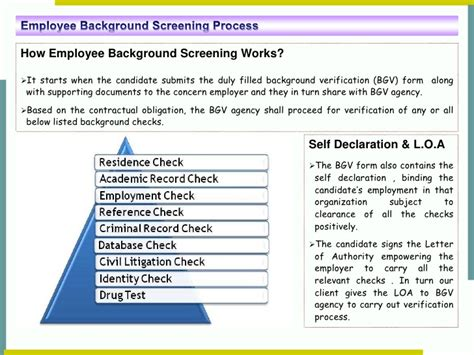 10 year background check form a glimpse at background screening process