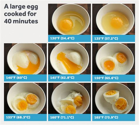 Cooking For A Crowd the definitive guide to eggs serious eats