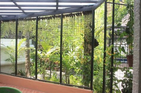 pool screen privacy curtains lush hanging greens provide privacy screens to pool lanai