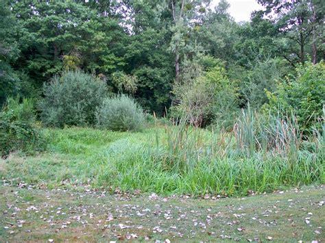 Creuser Un étang by Paysage De D 233 Solation Bienvenue Sur 233 Tang Et Chalet