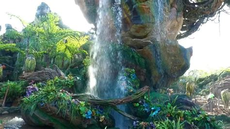 themes in animal kingdom film first look at disney world s pandora the world of