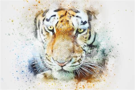 free animal painting free illustration tiger animal abstract free