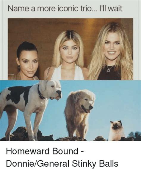 homeward bound names 25 best memes about homeward bound homeward bound memes
