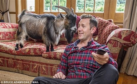goats as house pets related keywords suggestions for having a pet goat
