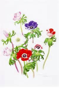 ボタニカルアート 植物画