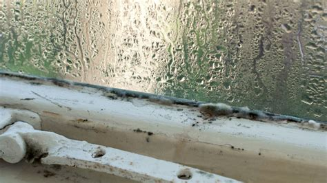 moisture on windows in house moisture on windows in house 28 images solving your winter condensation problems