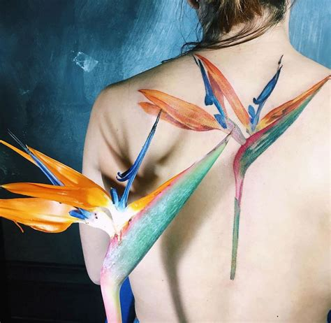 bird of paradise flower tattoo designs bird of paradise flower best design ideas