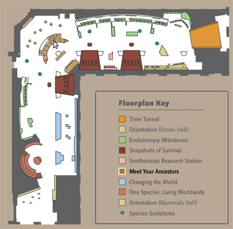 exhibit floor plan interactive exhibit printable floorplan the smithsonian
