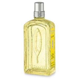 Summer Fragrance Citrus Is In by Lemon Scented Perfume Citrus Verbena Summer Fragrance L