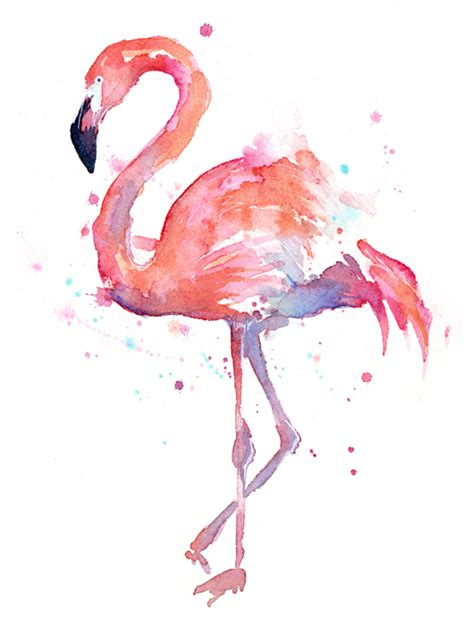 Gembok Transparan Transparent Limited flamingo watercolor t shirt for sale by olga shvartsur