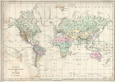 antique world map   world  atlas plant