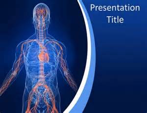 Anatomy Powerpoint Templates by Vascular System Anatomy Powerpoint Template Powerpoint