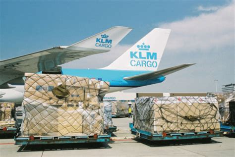 hae acquires south africa s groupair air cargo week