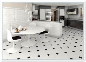 Kitchen Floor Black And White Learn About White Alaska Granite Home And Cabinet Reviews