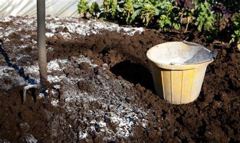 guide d utilisation de la chaux dans votre jardin trucs