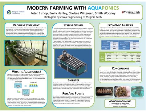 aquaponics business plan templates aquaponics systems commercial search aquaponics
