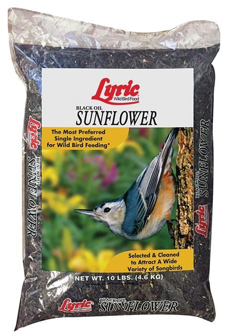 lyric 2647277 sunflower seed 10 lb bag