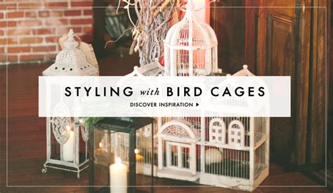 wedding decoration ideas bird cage designs inside weddings