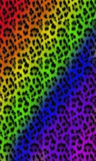 colorful cheetah print 1000 images about wallpaper on animal print