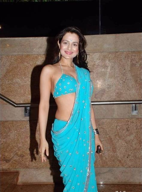 amisha patel in saree beautiful indian actress picture photo collection