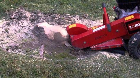 home depot stump grinder