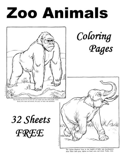 free zoo animal coloring pages zoo animal coloring sheets and pictures