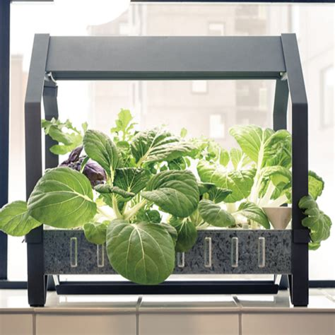 ikea garden kit ikea launches hydroponic indoor gardening kit ideal home