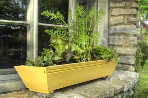 window box herb garden makveov01 grow a kitchen garden in a window box