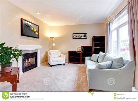 Elegant Modern American Living Room Interior With Fireplace. Stock Photo Image: 29838570