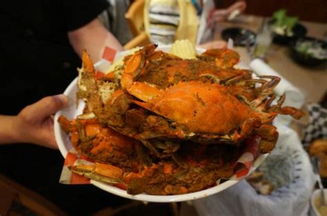 phillips crab house phjillips seafood crab feast picture of phillips seafood baltimore tripadvisor