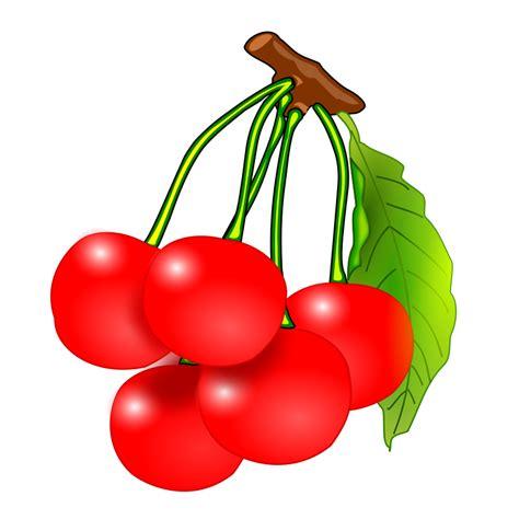 fruit clipart free fruit clip cliparts co