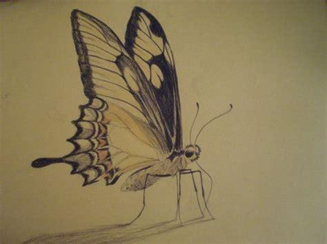imagenes de mariposas a lapiz 17 mejores ideas sobre lapiz amarillo en pinterest