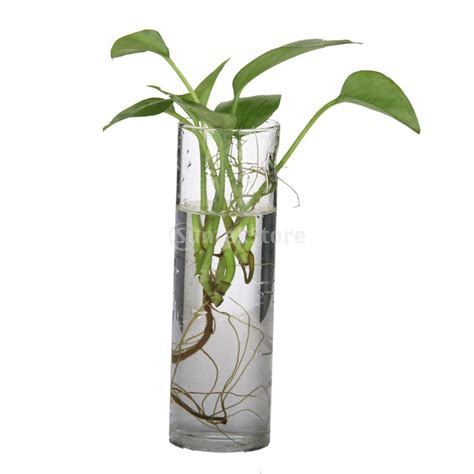 composition florale vase haut transparent dootdadoo