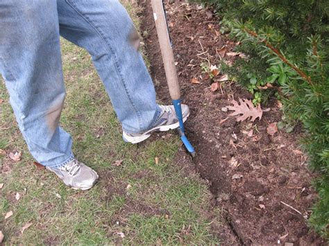 garden bed edger awesome edge artist landscape edgere z