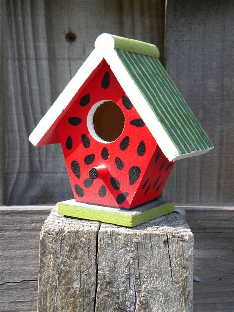 bird in the house small wooden bird houses pictures expensive