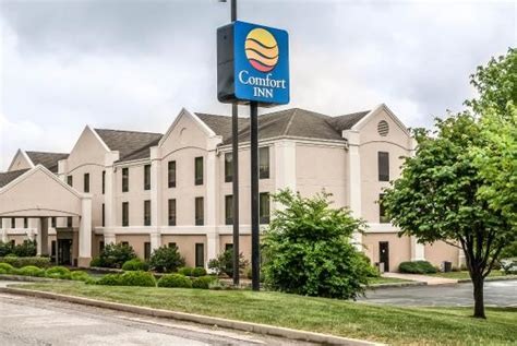 comfort suites st louis mo comfort inn six flags st louis pacific hotel reviews